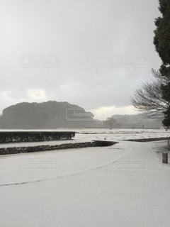 雪景色の写真・画像素材[1000422]