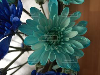 ブルーの鉢とガラス - No.759678