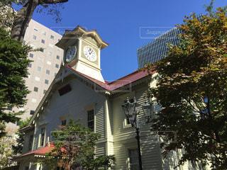 札幌時計台の写真・画像素材[1599268]