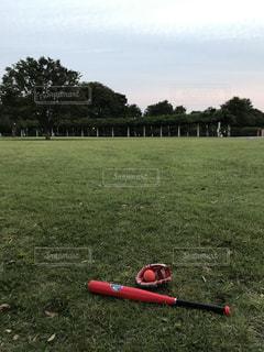 公園で野球の写真・画像素材[787998]