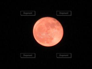 月の写真・画像素材[859704]