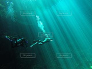 海の中の写真・画像素材[130773]