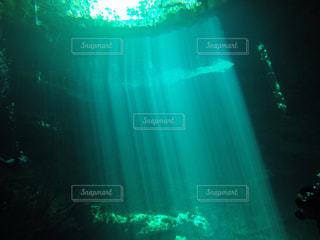 海の中の写真・画像素材[130774]