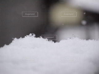 雪の写真・画像素材[760666]