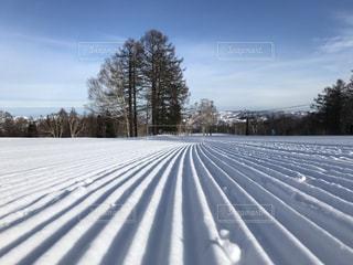 圧雪バーンの写真・画像素材[1762626]
