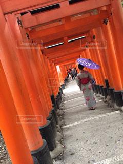 伏見稲荷大社の鳥居と女性の写真・画像素材[1381425]