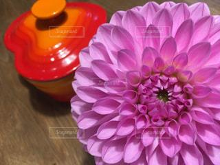 ピンクのダリアと小物入れの写真・画像素材[821209]