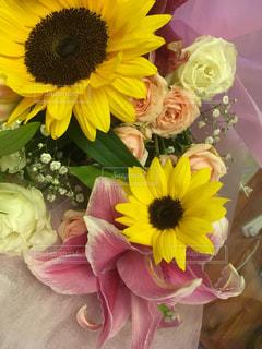 花束はひまわりたくさん 元気になるの写真・画像素材[2481092]