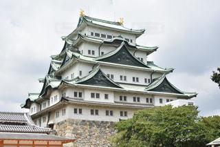 名古屋城の写真・画像素材[764542]