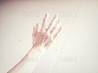 白い手 - No.793020