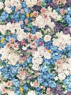 花だけの写真・画像素材[820837]