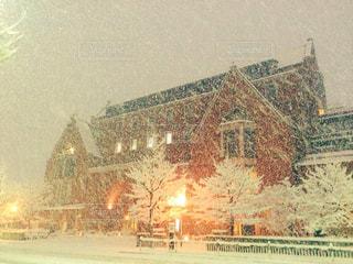 雪景色の写真・画像素材[878137]
