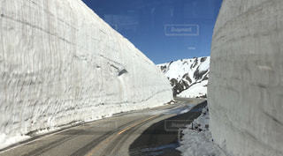 煙る山頂の雪をスノーボードに乗る男の写真・画像素材[769107]