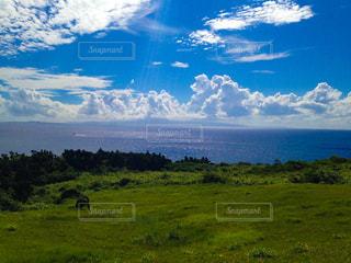 石垣島の海と空の写真・画像素材[785659]