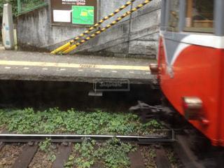 箱根登山鉄道の写真・画像素材[824052]