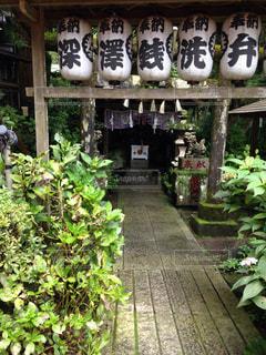 箱根旅行の写真・画像素材[824103]