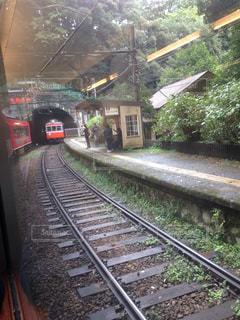 箱根登山鉄道の写真・画像素材[824104]