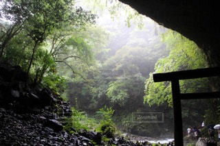 天岩戸神社の写真・画像素材[824552]