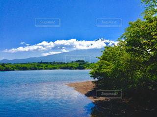 田貫湖からの富士山の写真・画像素材[766530]