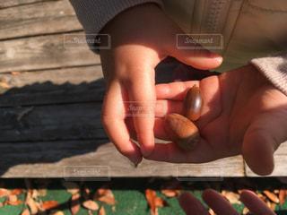 小さい秋見つけたの写真・画像素材[847562]