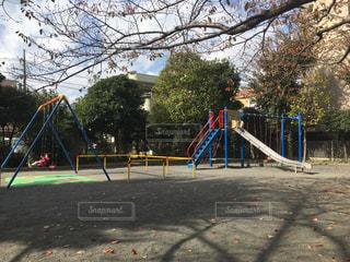 秋の公園の写真・画像素材[864545]
