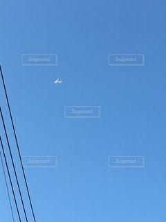 飛行機の写真・画像素材[1603006]