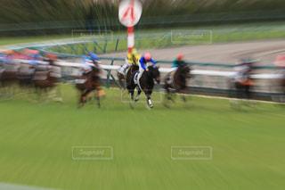 フィールドで馬に乗る男の写真・画像素材[767514]