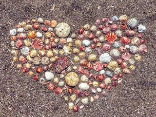 海の宝物 - No.767415