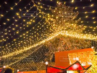 ケルンのクリスマスの写真・画像素材[769024]
