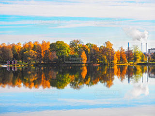 湖の中の森 - No.769683