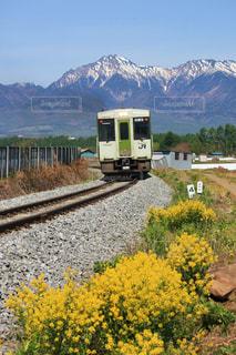 八ヶ岳山麓を行く高原列車の写真・画像素材[771881]