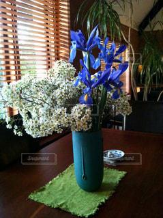 青と白のランデブーの写真・画像素材[810287]