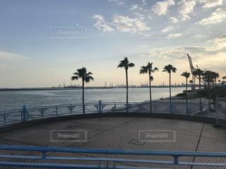 ビーチの写真・画像素材[769229]