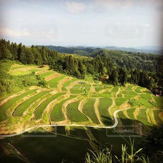 緑豊かな緑の丘陵と川の写真・画像素材[769454]
