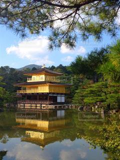 京都 金閣寺の写真・画像素材[770357]