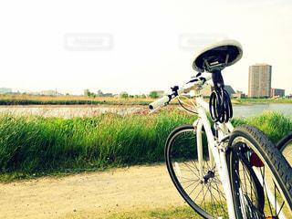 サイクリングの写真・画像素材[770504]