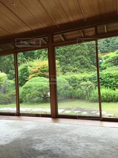 和室からの庭園の写真・画像素材[771667]