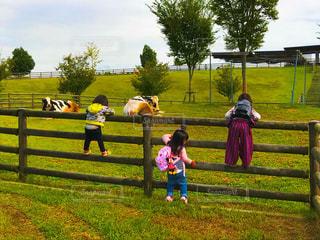 フェンスの前に立っている人々 のグループの写真・画像素材[776390]