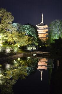 東寺のライトアップ - No.841872