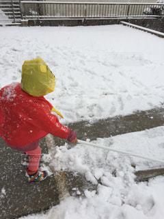 雪かきの写真・画像素材[986809]