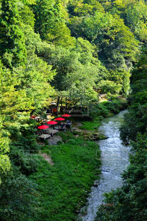 川の近くでひと休みの写真・画像素材[772425]