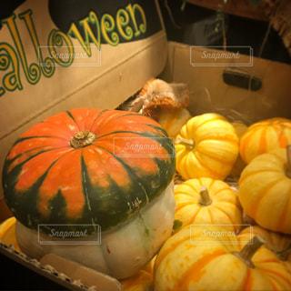 pumpkin Halloween カボチャ - No.779743