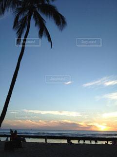 ヤシの木と夕暮れの写真・画像素材[806511]