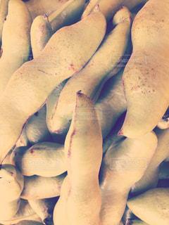 獲れたてそら豆の写真・画像素材[773683]