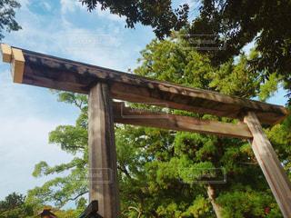 木の棒上の標識の写真・画像素材[781887]
