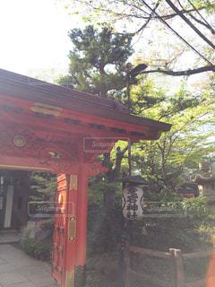 愛宕神社の写真・画像素材[783984]