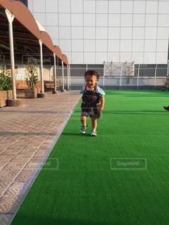 草の中に立っている小さな男の子の写真・画像素材[781873]