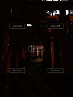 闇夜に染まる鳥居の写真・画像素材[774104]