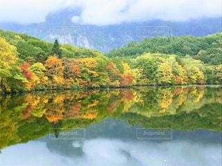 紅葉を映す鏡池の写真・画像素材[812290]