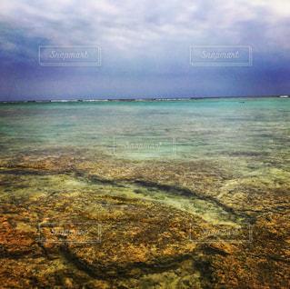 透き通っている沖縄の海の写真・画像素材[775010]